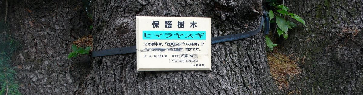 protection-plaques